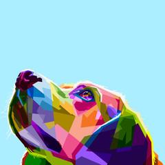 colorful dog head