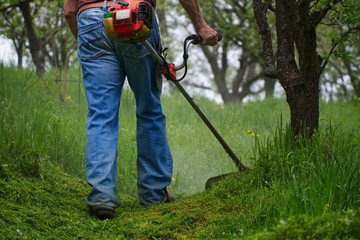 Gardener mowing grass by brushcutter in garden