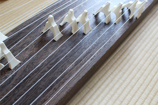 琴 日本 和室 練習 無人