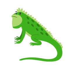 Iguana exotic reptile cartoon icon