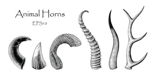 Animal horns vector set hand drawing vintage engraving illustration