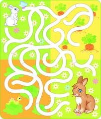 Spring rabbit maze