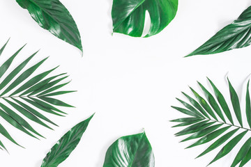 Leaf pattern. Green tropical leaves on white background. Summer concept. Flat lay, top view, copy space