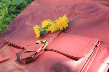 Löwenzahn auf Handtasche