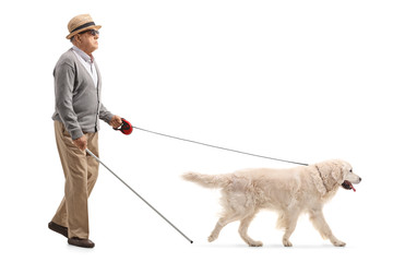 Blind mature man walking with the help of a dog