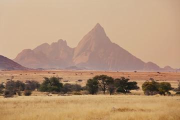 Namib landscapes Wall mural