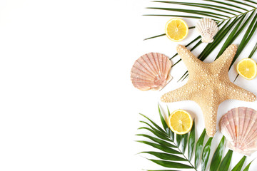 Composition of exotic seashells, oysters, starfish and lemons on lush green palm leaves isolated on white wooden background. Tropical summer vacation concept, flat lay, top view