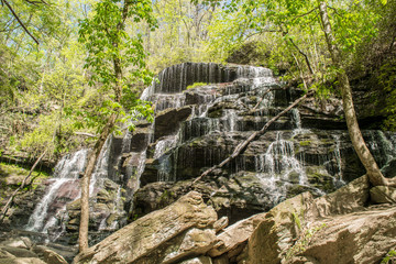 Yellowbranch Waterfall 4