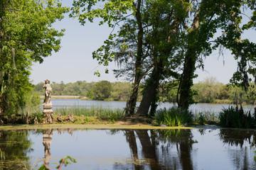 Magnolia Swamp 3