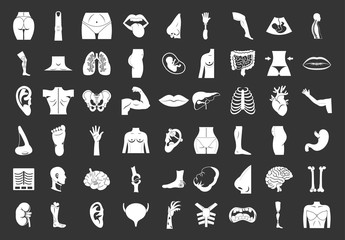Human body icon set vector white isolated on grey background