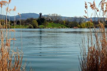 Freiburger Seepark im Frühling