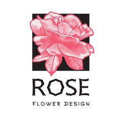 Red rose-vector logo image. Graphic illustration of flowers clip art, pattern for floral design element for logo or template.