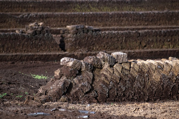 peat extraction, turf blocks piled up to dry, industrial nature destruction of a raised bog, Venner Moor, Lower Saxony, Germany