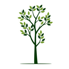 Shape of young green Tree. Vector Illustration.