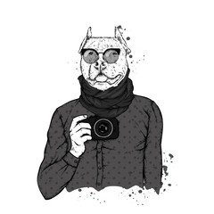 Hipster dog with human body and camera. Animal in clothes. Vector illustration.