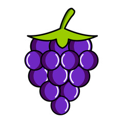 Isolated grapes icon