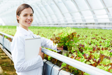 Portrait of young beautiful Caucasian woman holding fresh organic lettuce and smiling happily while standing in large industrial greenhouse