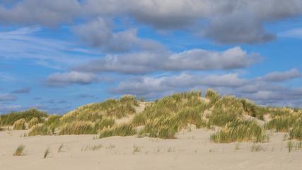 Wall Mural - Coastal sand dune landscape