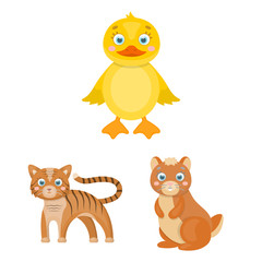 Toy animals cartoon icons in set collection for design. Bird, predator and herbivore vector symbol stock web illustration.