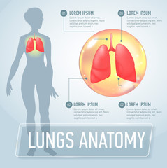 Lung. Modern medical infographics. Internal organs in a female human body. Anatomy of people