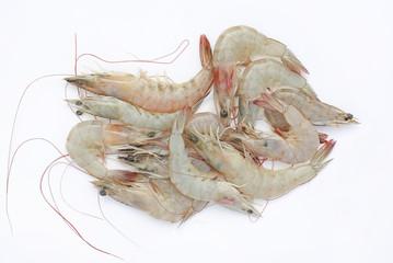 Fresh shrimp isolate on white background.