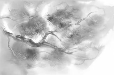 pine branch watercolor background