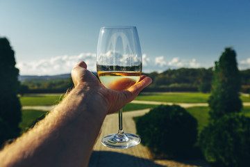 Mans Hand Holding  Glass Of White Wine On A Summer Nature Landscape, Point Of View. Tasting Vacation Concept