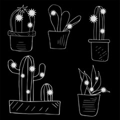 Black and white vector cactus chalk drawing