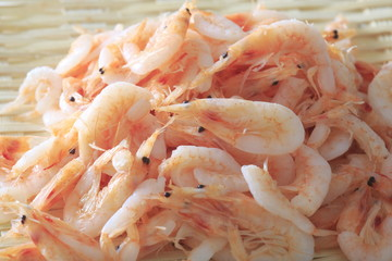 Image shot of Sakura shrimp