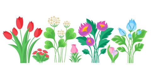 Colorful flowers bouquets set.