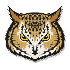 Owl logo. Wild birds drawing. Head of an owl. Vector graphics to design.