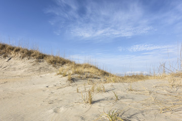 Beach Sand Dunes in Morning Light with Blue Sky