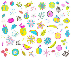 Set of colorful floral fruits nuts veggies and leaves. Vector illustration.