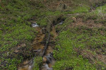 Small spring creek near Teplicka village