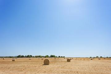Santa Margalida, Mallorca - Arable land full of hay bales after harvest