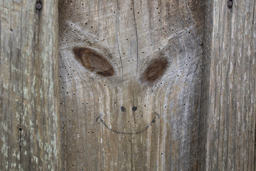 Creepy Face in Wood