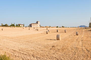 Santa Margalida, Mallorca - Traditional farming on cultivated areas near Santa Margalida