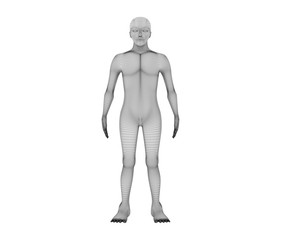 Human front view. Wireframe model with lines on white background, artificial intelligence in futuristic technology concept, 3d illustration