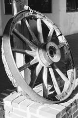 BW wooden wheel