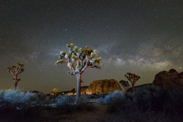Milky Way Galaxy at night in Joshua Tree National Park, California