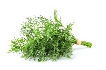 Bunch fresh dill closeup isolated.