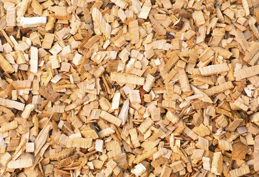 Wood chips of alder-tree for smoking or recycle. Texture for background.