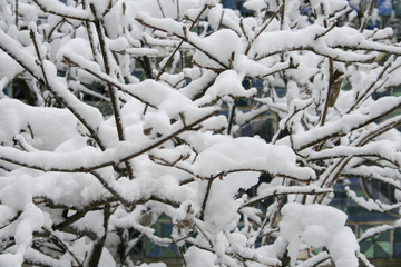 Providence RI Winter