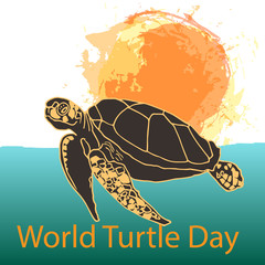 World Turtle Day concept
