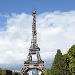 Eiffel Tower distant landscape view square format