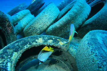 Pollution in ocean environmental problem. Car tyres dumped on coral reef in sea.