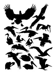 Pelican detail silhouette. Vector, illustration. Good use for symbol, logo, web icon, mascot, sign, or any design you want.