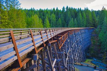 Kinsol Trestle railroad bridge in Vancouver Island, BC Canada.
