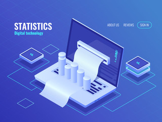 Statistic and analysis concept, data processing result, economic report, electron bill, billing system isometric vector