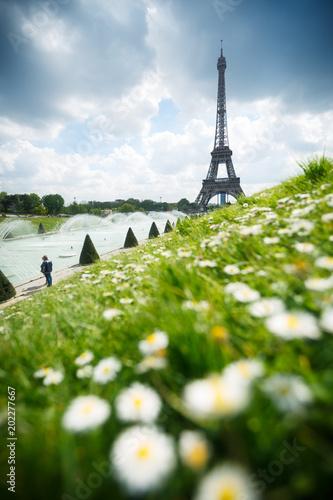 Wall mural Tour Eiffel au printemps - Paris France